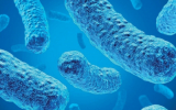 Legionella in care homes